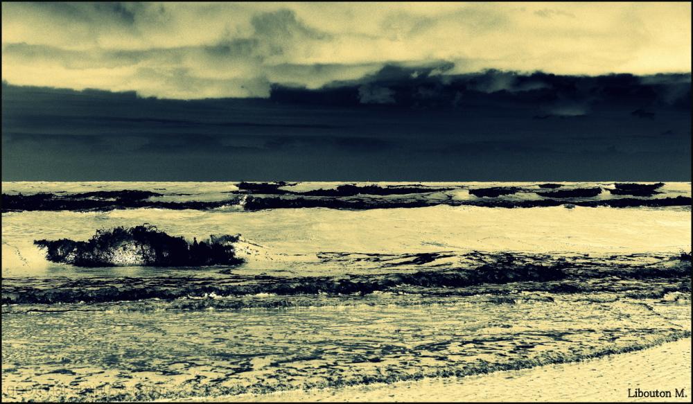 Quand la mer est d'encre....