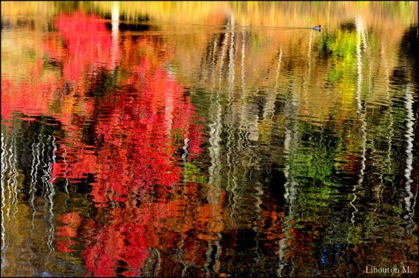 Rêve ta vie en couleur c'est le secret du bonheur