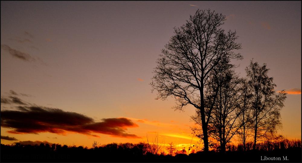 Les belles nuits font les beaux jours !
