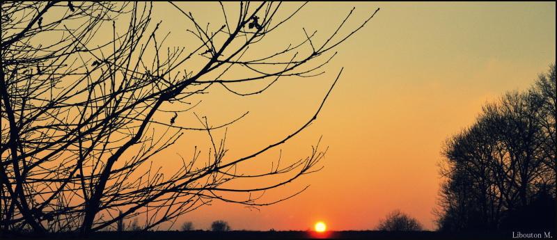 Le soleil se fait la malle.....