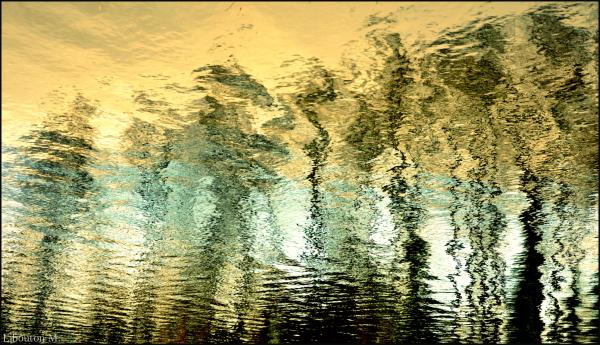 Frissons d'eau