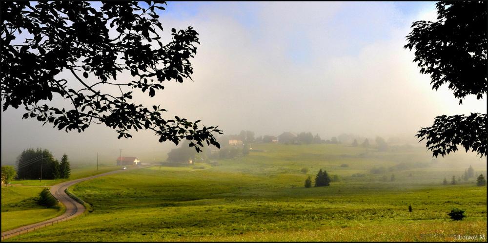 Le soleil et le brume se disputent la place!!