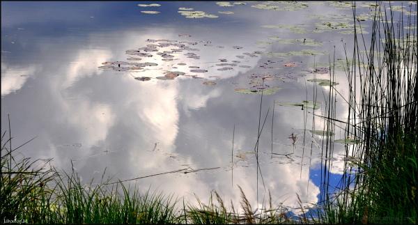 La baignade des nuages