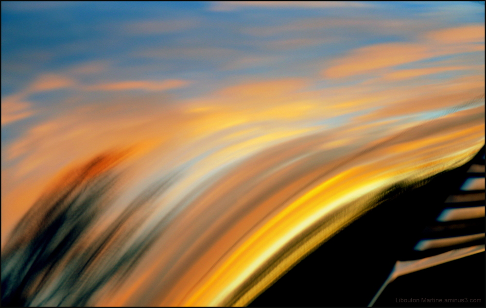 L'aile au coucher du soleil