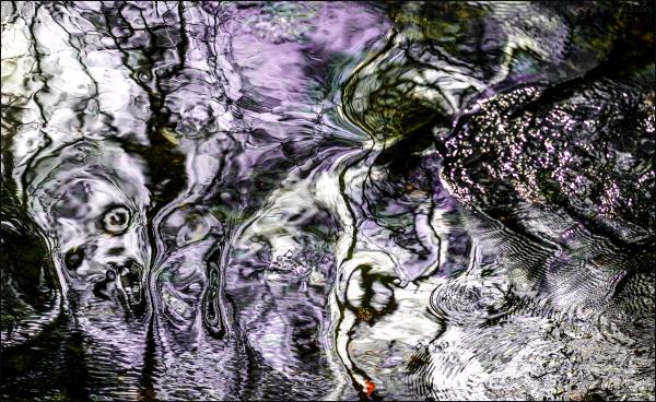 Le cri de Munch
