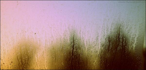Les ombres de la pluie