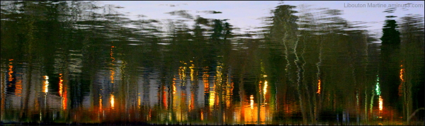 Les feux follets du lac
