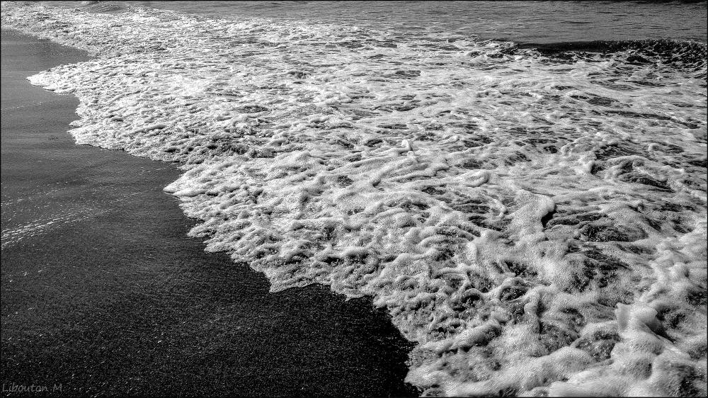 Chiffonnade de la mer du Nord