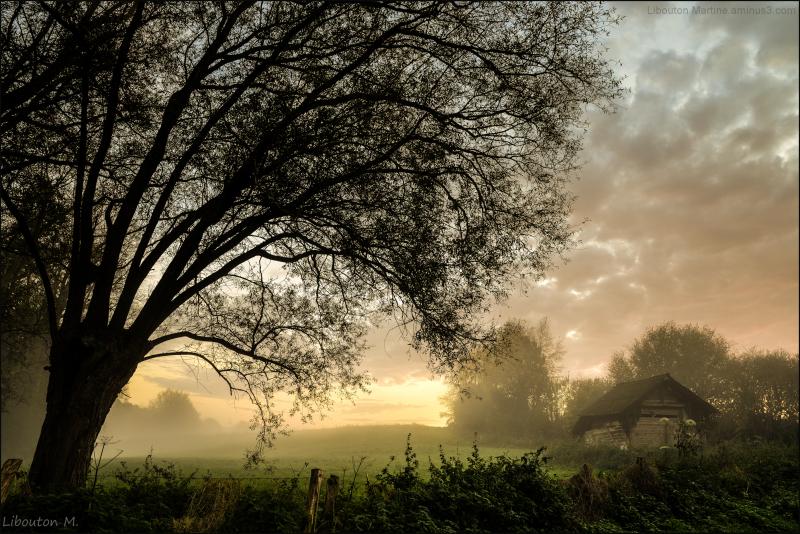 L'automne est un andante mélancolique