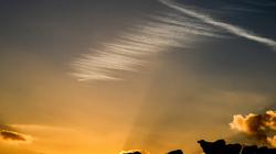 Vachement beau ce coucher de soleil!