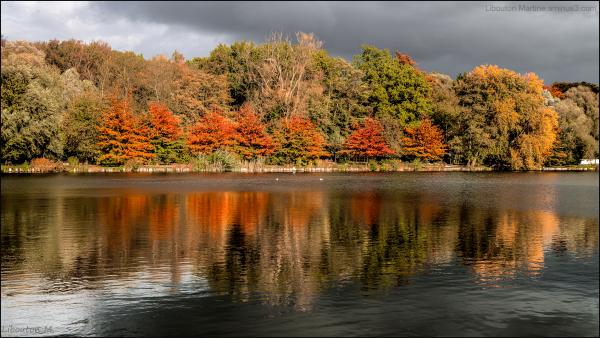 Frisson d'automne