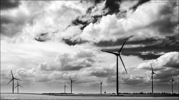 Le champs d'éoliennes