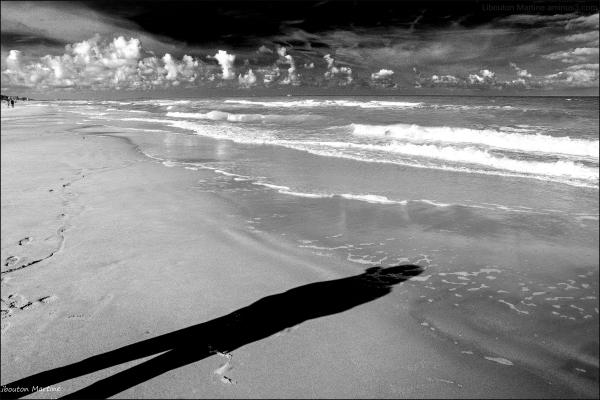 L'ombre de la plage