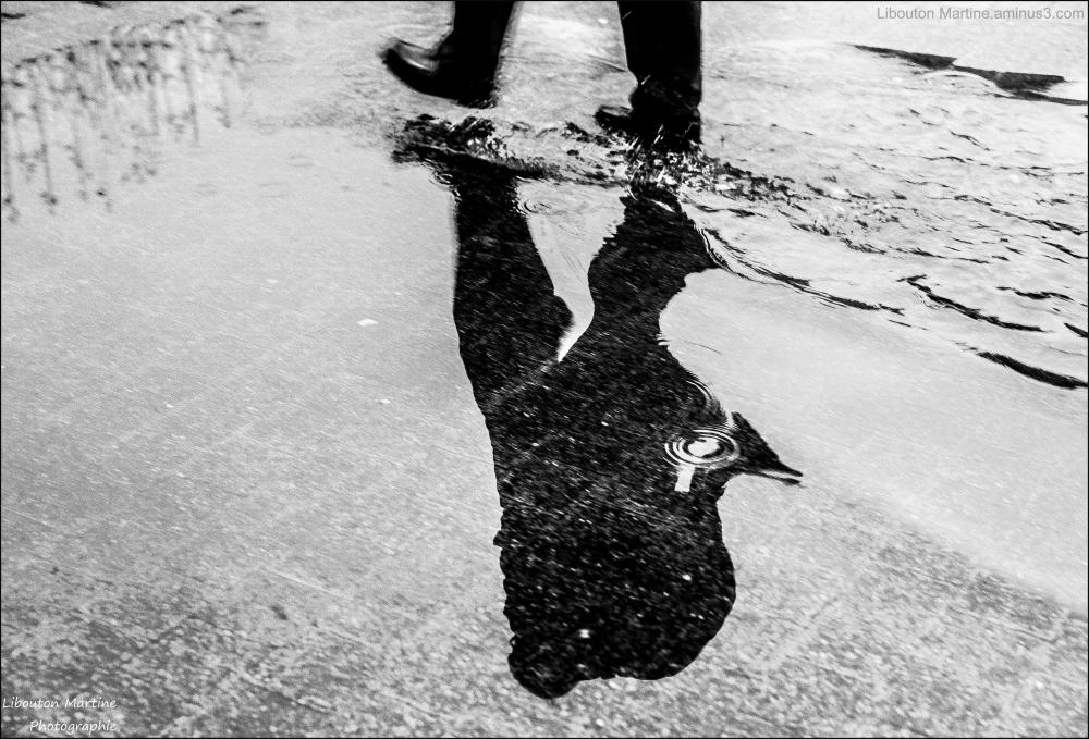 Le passager de la pluie