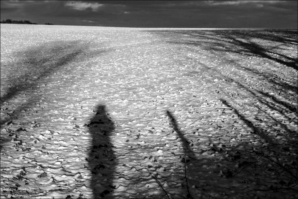 Les ombres du crépuscule