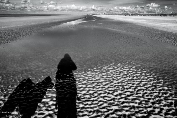 Les ombres de la plage