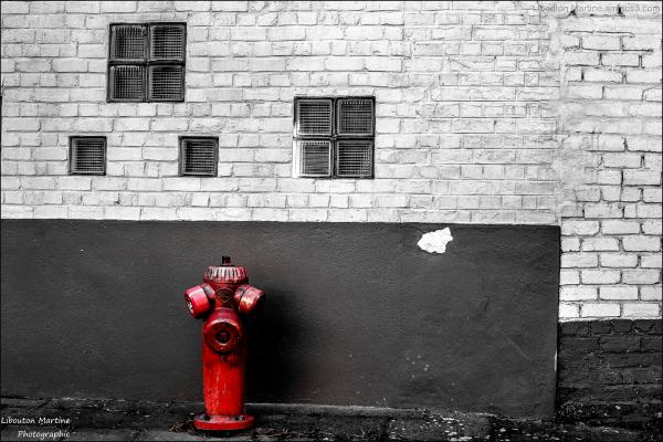 La solitude d'une borne d'incendie (5)