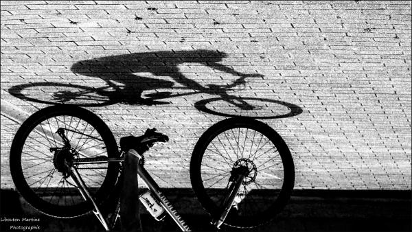 Le vélo est le stylo de l'asphalte .