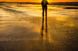 Le géant des plages