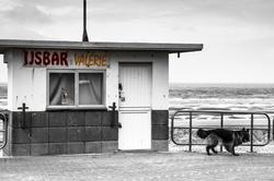 Bar à glaces Valérie  ...Zut...C'est fermé...