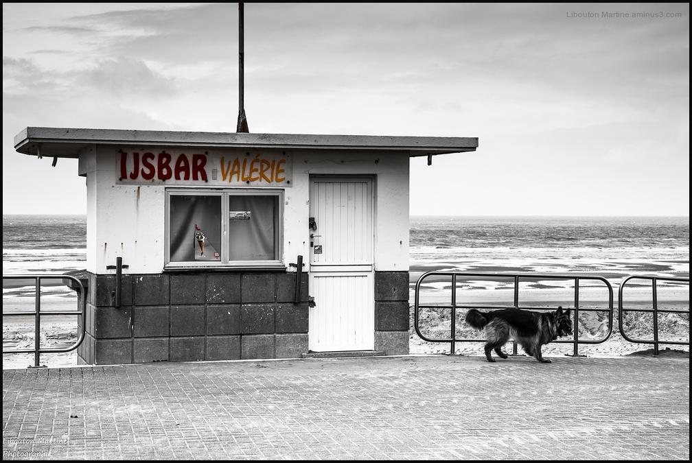 Bar à glaces Valérie  ...Zut....C'est fermé....