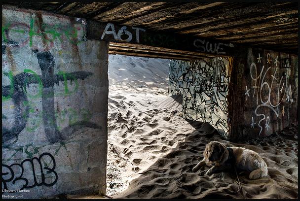 Le secret du Bunker de Leffrinckoucke 6