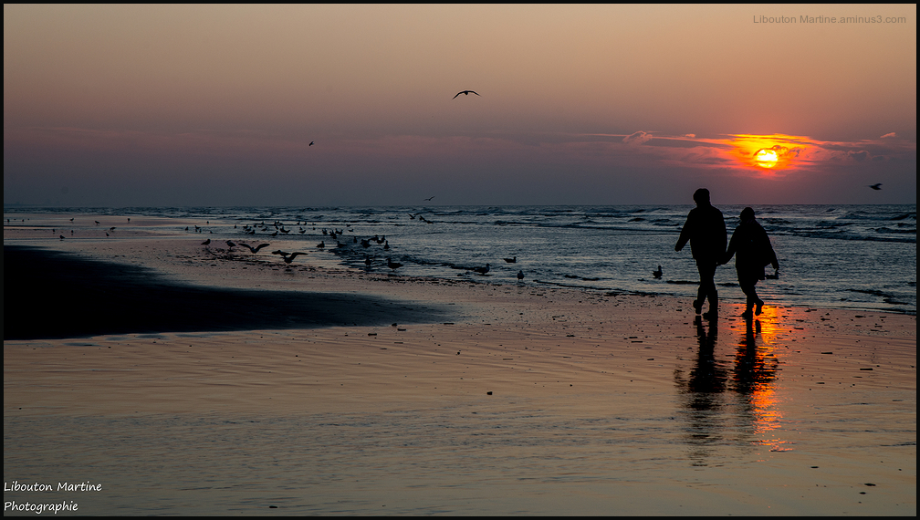 Les amoureux du  bord de mer