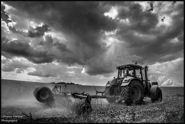Le travail aux champs !