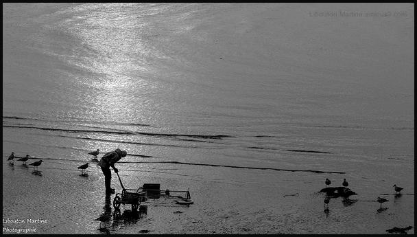 Le pêcheur de crevettes