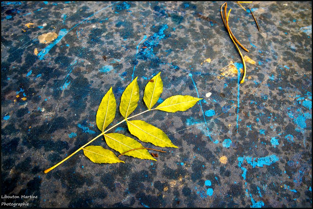 La danse des feuilles mortes