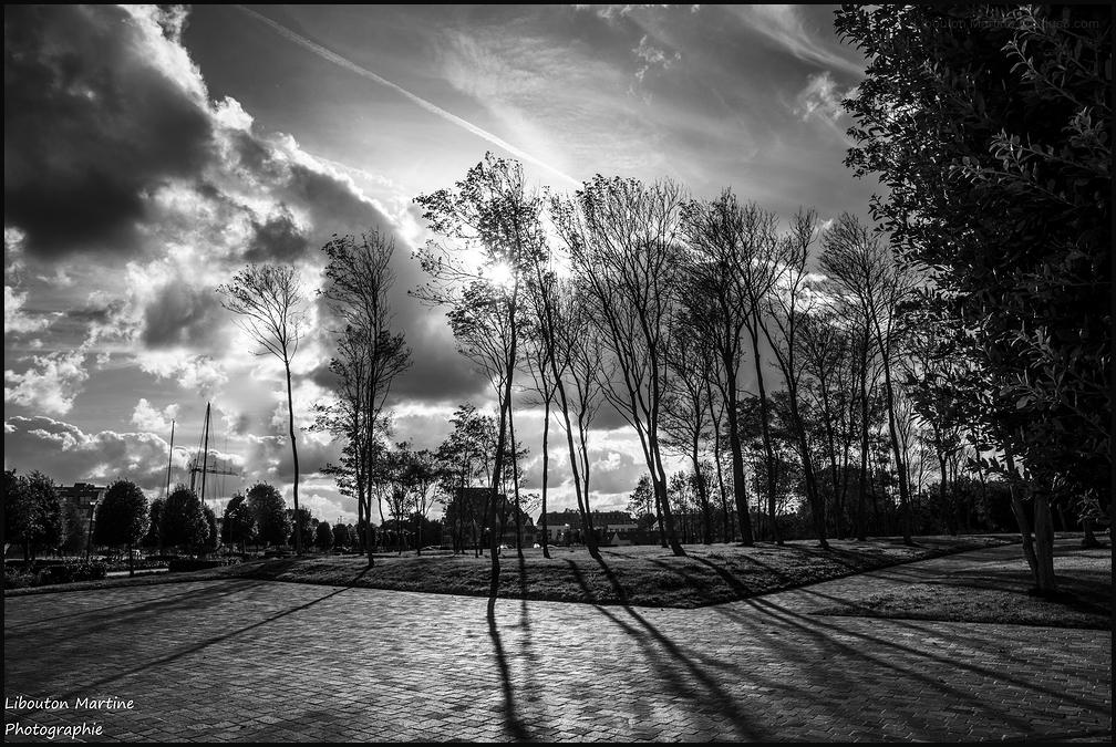 La route des ombres