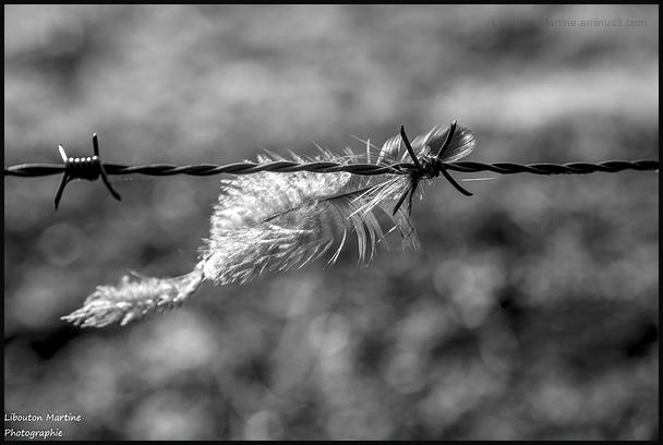 Privée de liberté