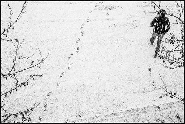 Jour de neige  9h46