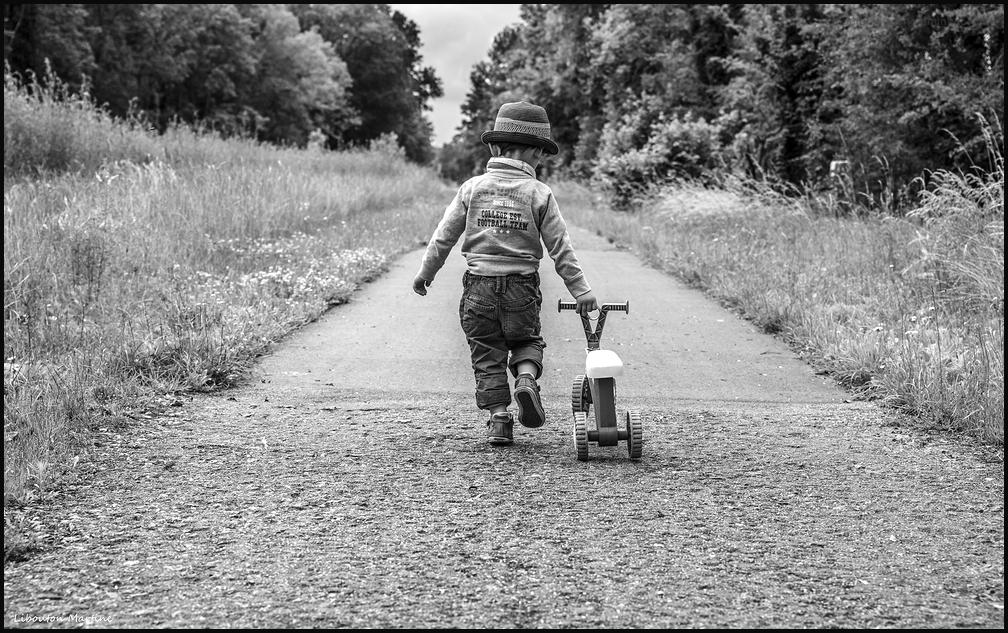 Sur le chemin de sa vie ...
