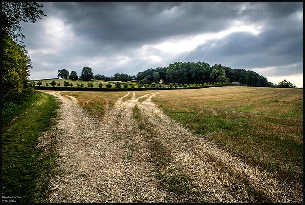 La route des tracteurs !