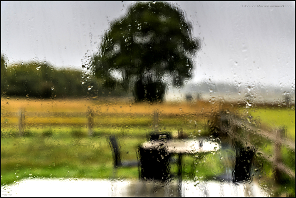 Jour de pluie !!
