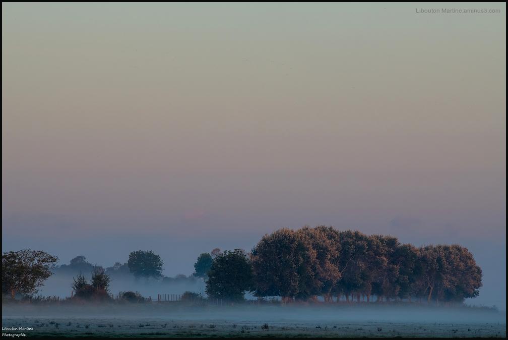 Juste avant le lever du soleil