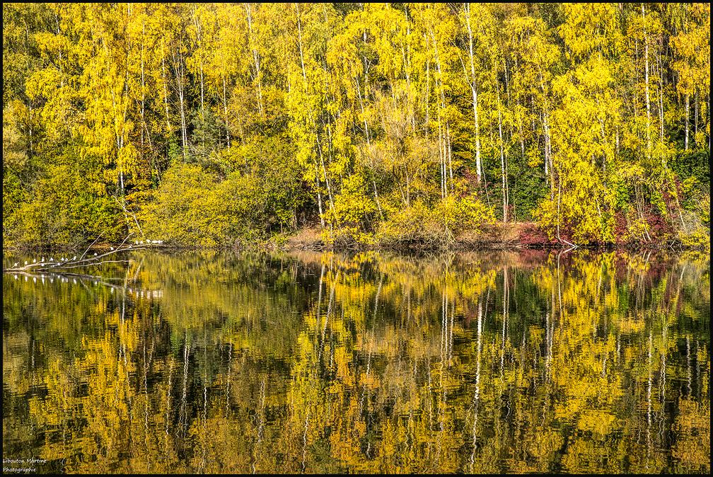 L'automne sur le lac !