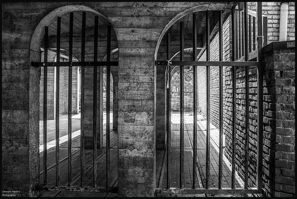 Carcerale