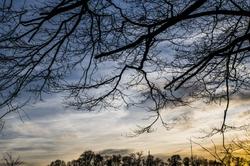 On plie une jeune branche, mais pas un vieil arbre