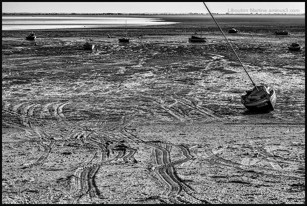 Cancale à marée basse