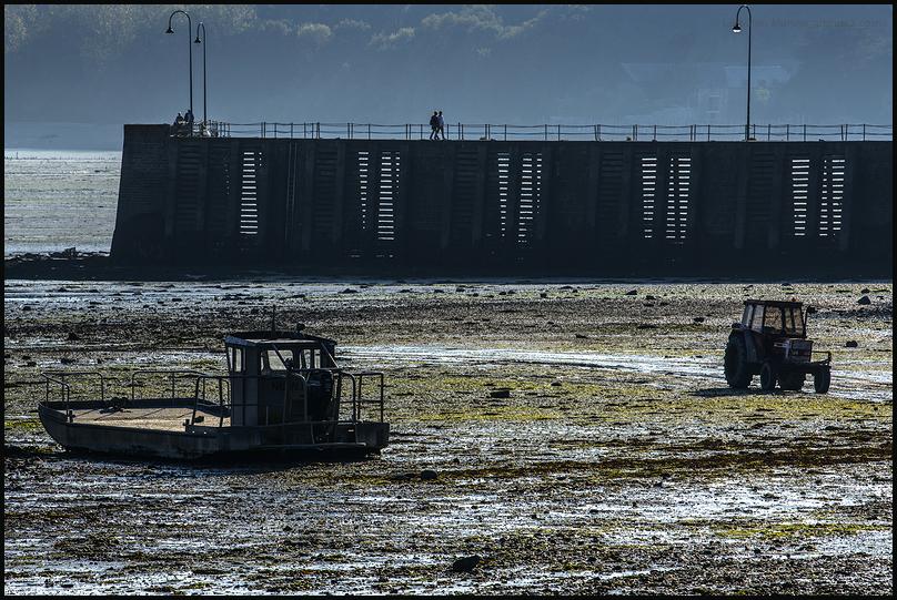 Cancale à marée basse 2