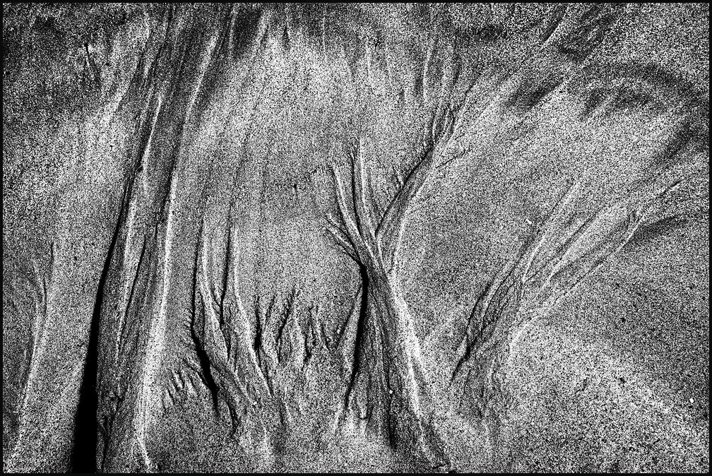 Les flammes de sable