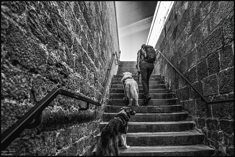 Les remparts de Saint Malo 2