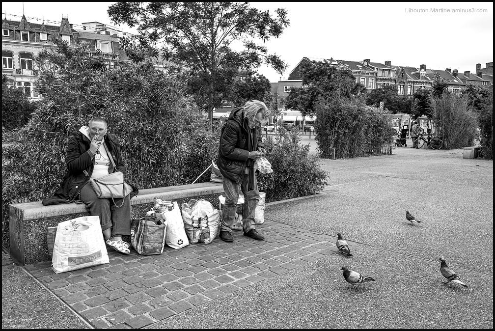 Les pigeons de la gare des Guillemins !