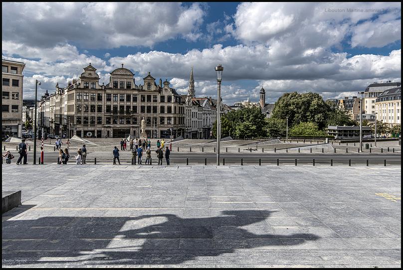 Visiter Bruxelles à Cheval !!!!!!