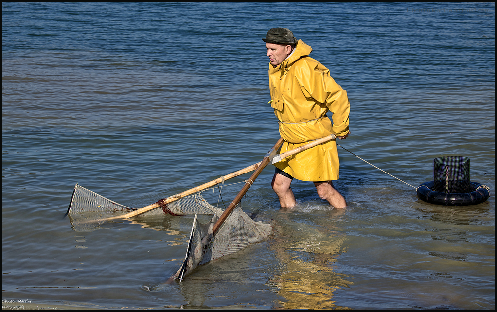 Le pêcheur de crevettes avec un dranet !