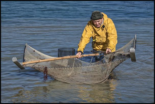 Le pêcheurs de crevettes avec un dranet ! 2