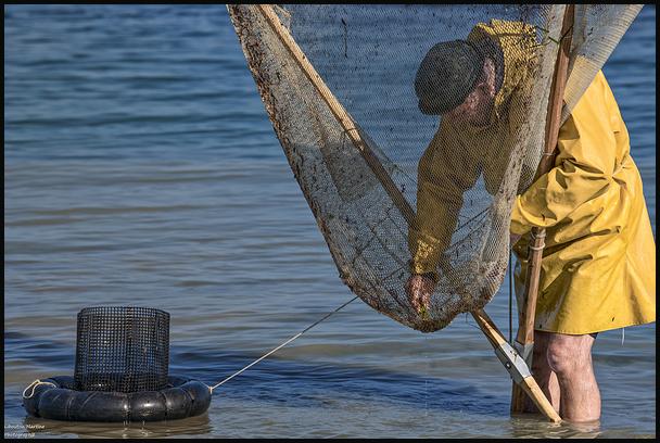 Le pêcheurs de crevettes avec un dranet ! 4
