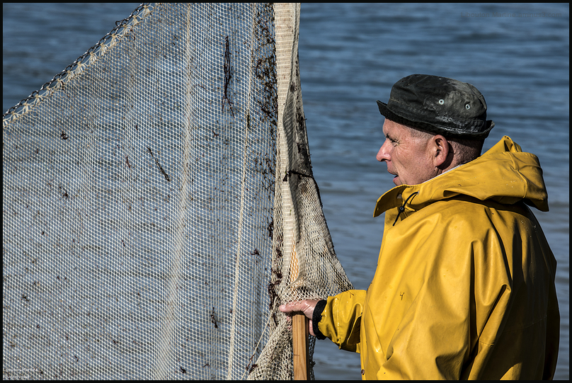 Le pêcheurs de crevettes avec un dranet ! 5 et fin